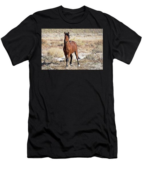 Beautiful Bay Men's T-Shirt (Athletic Fit)