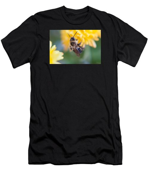 Beautiful Bee Men's T-Shirt (Athletic Fit)