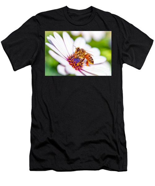 Beautiful Bee On Daisy Men's T-Shirt (Athletic Fit)