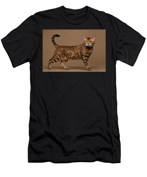 Beautiful Bengal Cat Stands On Brown Background Men's T-Shirt (Athletic Fit)