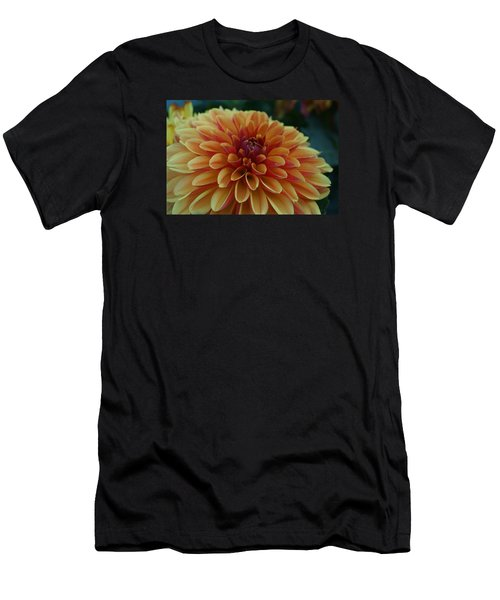 Beautiful Dahlia 1 Men's T-Shirt (Athletic Fit)