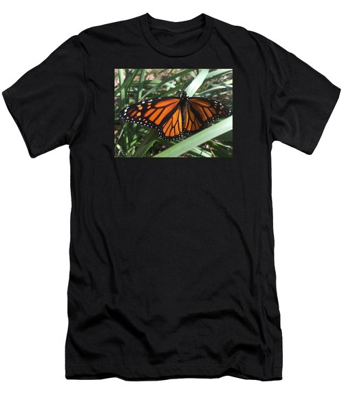 Beautiful Fall Butterfly  Men's T-Shirt (Athletic Fit)