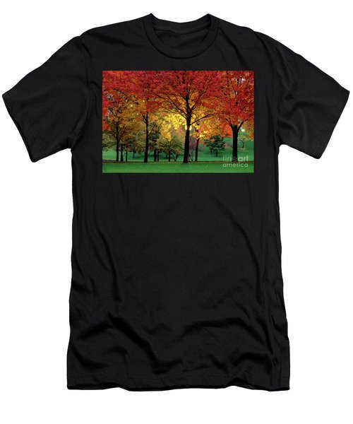 Beautiful Light At The Park In St. Louis In Autumn Men's T-Shirt (Athletic Fit)