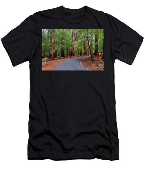Beautiful Redwood Grove Men's T-Shirt (Athletic Fit)