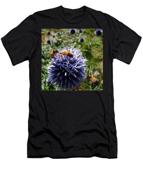Bee Circles Men's T-Shirt (Athletic Fit)