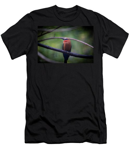 Bee-eater Men's T-Shirt (Athletic Fit)