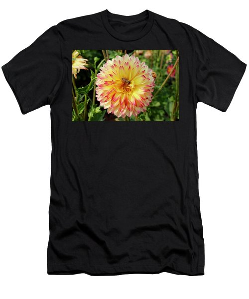 Bee In The Middle Men's T-Shirt (Athletic Fit)