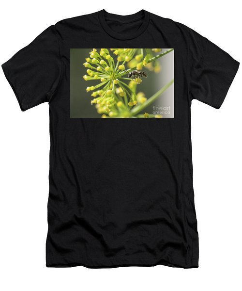 Bee Men's T-Shirt (Athletic Fit)