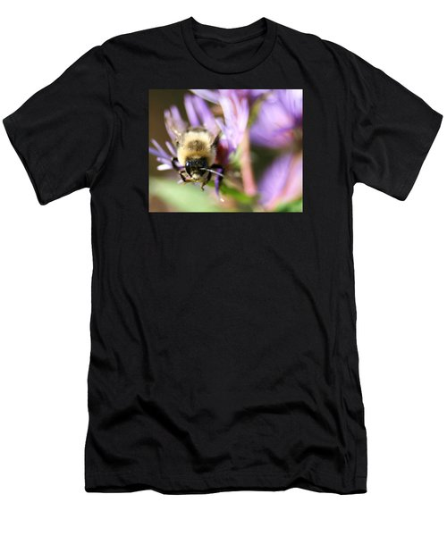 Bee Mustache Men's T-Shirt (Athletic Fit)