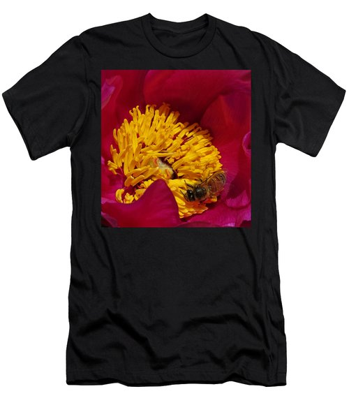 Bee On A Burgundy And Yellow Flower2 Men's T-Shirt (Athletic Fit)