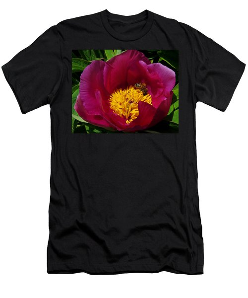 Bee On A Burgundy And Yellow Flower3 Men's T-Shirt (Slim Fit) by John Topman