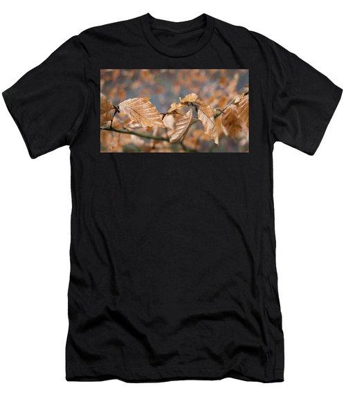 Beech Garland 3 Men's T-Shirt (Athletic Fit)