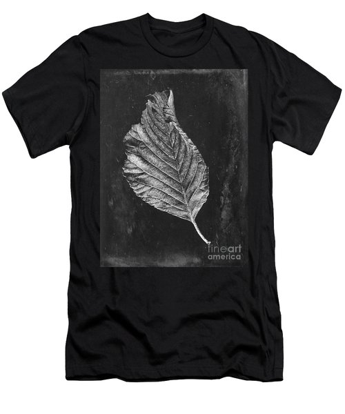 Beech Leaf Men's T-Shirt (Athletic Fit)