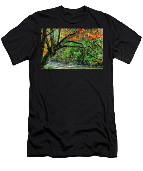 Beech Tree And Swinging Bridge Men's T-Shirt (Athletic Fit)