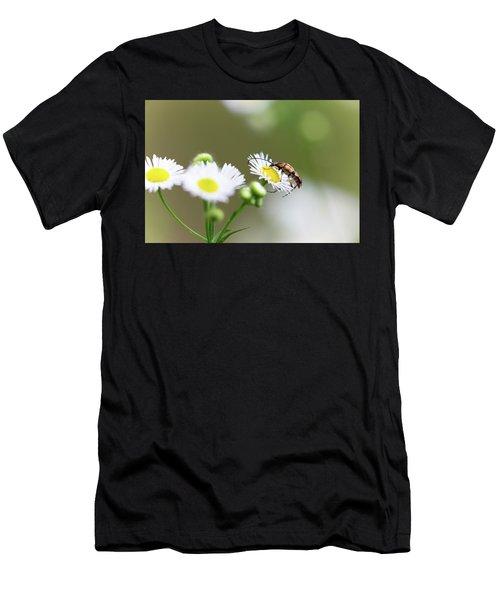 Beetle Daisy Men's T-Shirt (Athletic Fit)