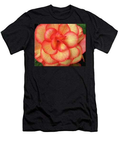 Begonia No. 1 Men's T-Shirt (Athletic Fit)