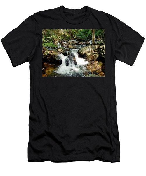 Below Anna Ruby Falls Men's T-Shirt (Slim Fit) by Jerry Battle