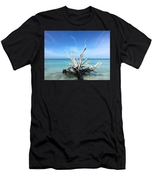 Beside Still Waters Men's T-Shirt (Athletic Fit)