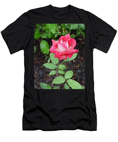 Bi-colored Rose In Rain Men's T-Shirt (Athletic Fit)