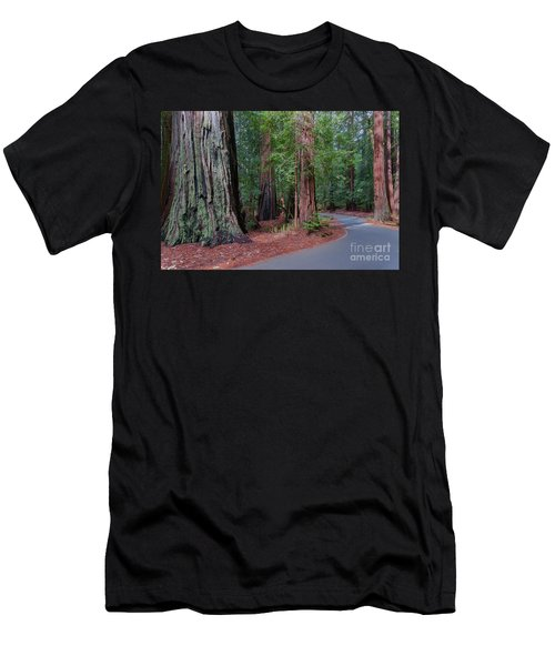 Big Basin Redwoods Men's T-Shirt (Athletic Fit)