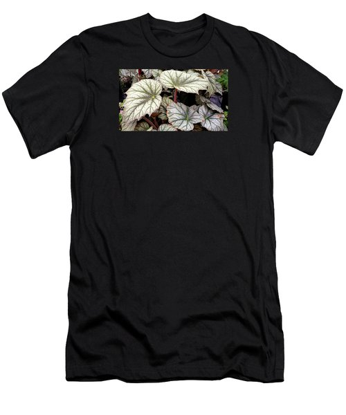 Big Begonia Leaves Men's T-Shirt (Athletic Fit)