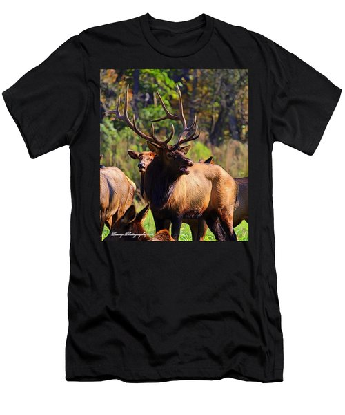 Big Elk Men's T-Shirt (Athletic Fit)