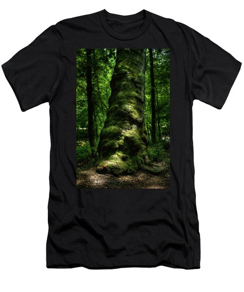 Big Moody Tree In Forest Men's T-Shirt (Athletic Fit)