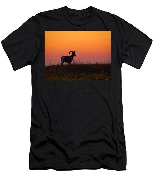 Bighorn Sunset Men's T-Shirt (Athletic Fit)