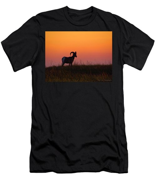 Bighorn Sunset Men's T-Shirt (Athletic Fit)