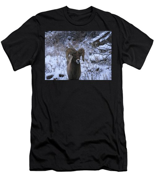 Bighorn5 Men's T-Shirt (Athletic Fit)