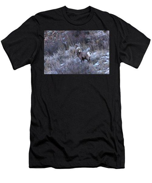 Bighorn8 Men's T-Shirt (Athletic Fit)
