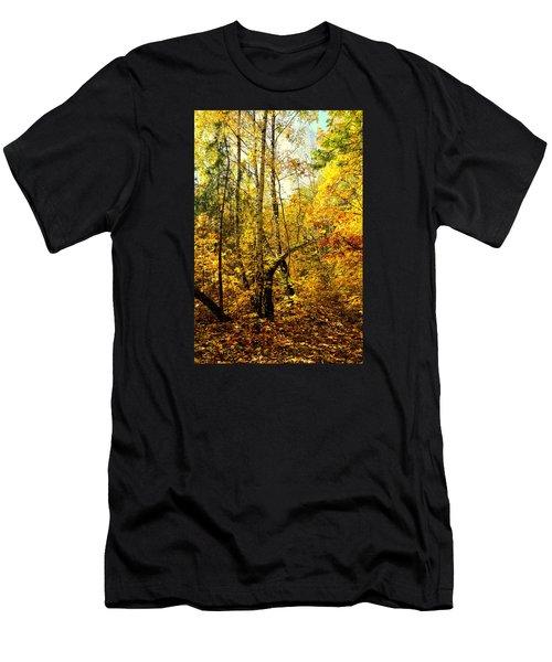 Birch Autumn Men's T-Shirt (Slim Fit) by Henryk Gorecki