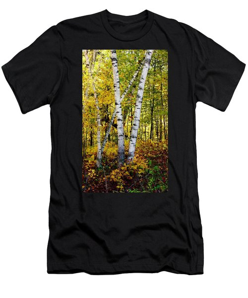 Birch In Gold Men's T-Shirt (Athletic Fit)