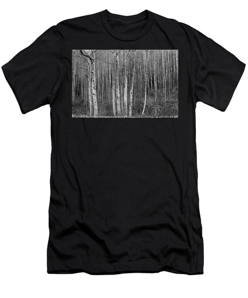 Birch Tress Men's T-Shirt (Athletic Fit)