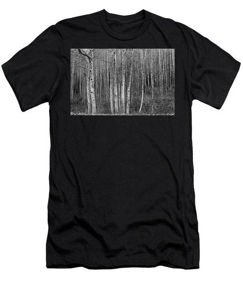 Birch Tress Men's T-Shirt (Athletic Fit)