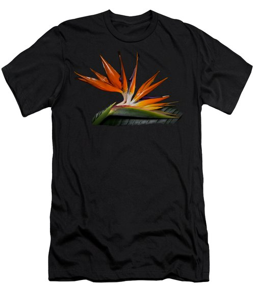 Bird In Paradise Men's T-Shirt (Athletic Fit)
