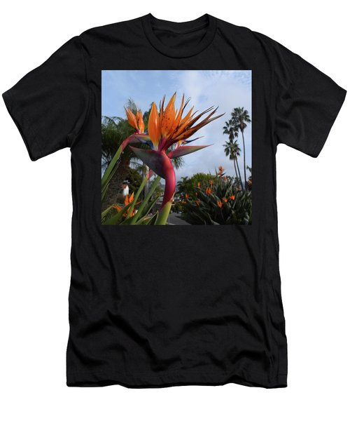 Bird Of Paradise Peace And Joy Men's T-Shirt (Athletic Fit)