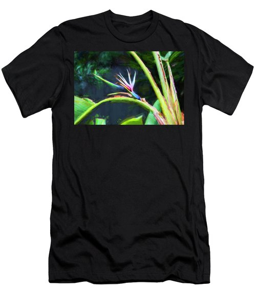 Bird Of Paradise Strelitzia Reginae 003 Men's T-Shirt (Athletic Fit)