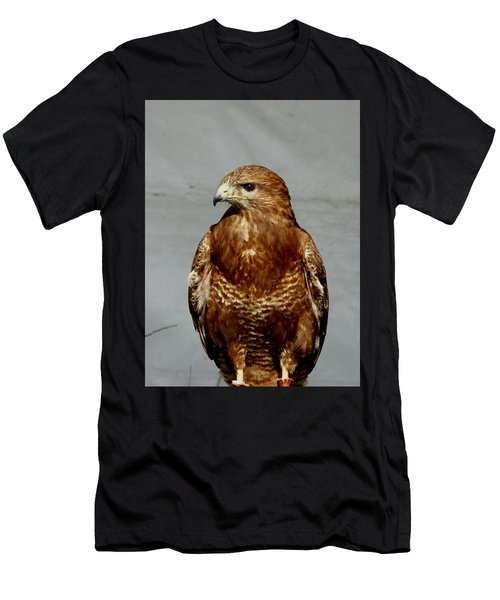 Bird Of Prey  Men's T-Shirt (Athletic Fit)