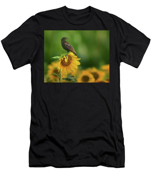 Bird On A Sunflower - Red-winged Blackbird Men's T-Shirt (Athletic Fit)