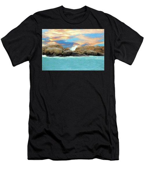 Birds On Ocean Rocks Men's T-Shirt (Athletic Fit)