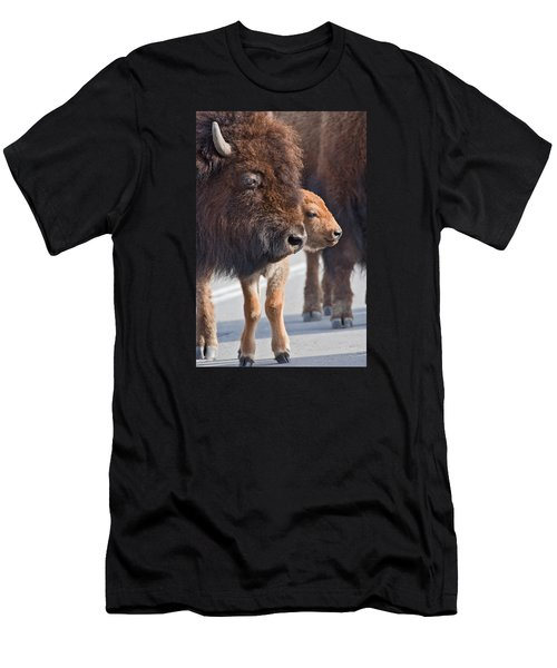 Men's T-Shirt (Athletic Fit) featuring the photograph Bison And Calf by Wesley Aston