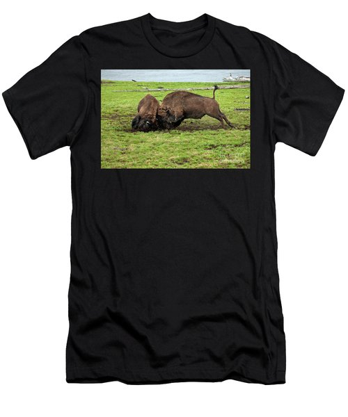 Bison Fighting Men's T-Shirt (Athletic Fit)