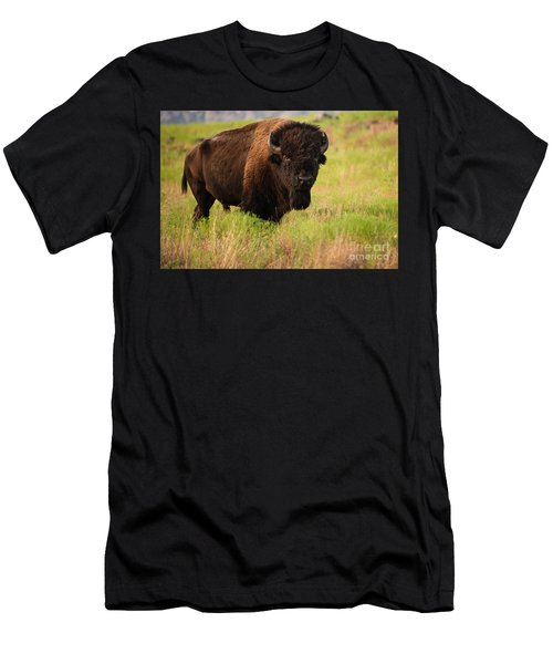 Bison Prime Men's T-Shirt (Athletic Fit)