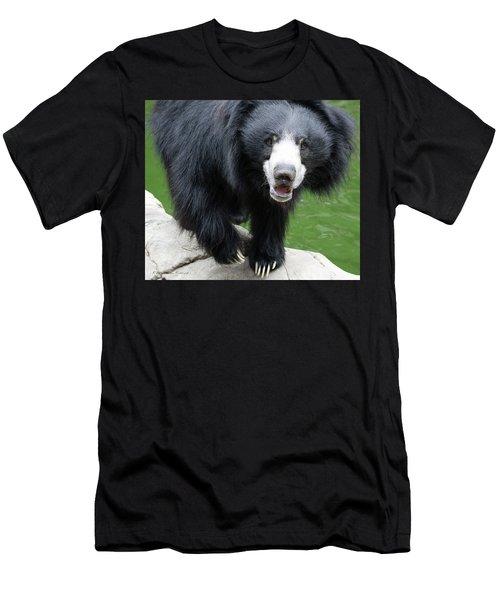 Sun Bear Men's T-Shirt (Slim Fit) by Inspirational Photo Creations Audrey Woods