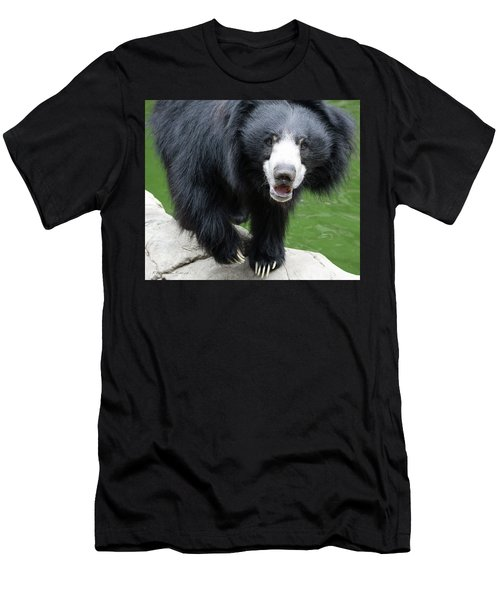Sun Bear Men's T-Shirt (Athletic Fit)