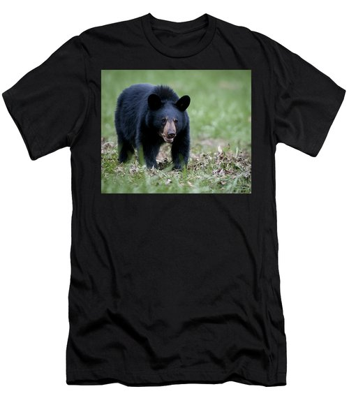 Men's T-Shirt (Slim Fit) featuring the photograph Black Bear by Tyson and Kathy Smith