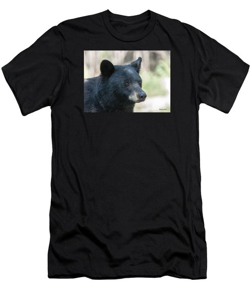 Black Bear Up Close Men's T-Shirt (Slim Fit) by Stephen  Johnson
