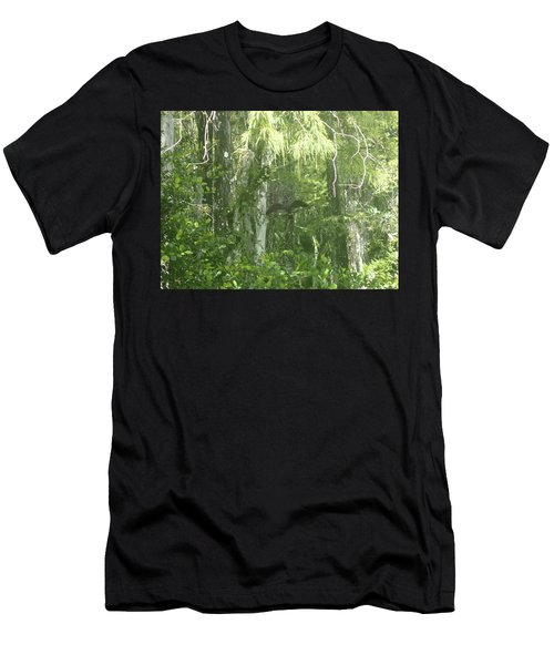 Black Birds And Cyprus Men's T-Shirt (Athletic Fit)