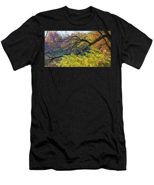 Black Branches Through Bright Autumn Trees Men's T-Shirt (Athletic Fit)